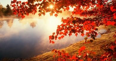 liscie-jesienne-slonca-jezioro-promienie-jesien