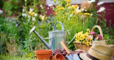 wiosenne-prace-w-ogrodzie_1637129