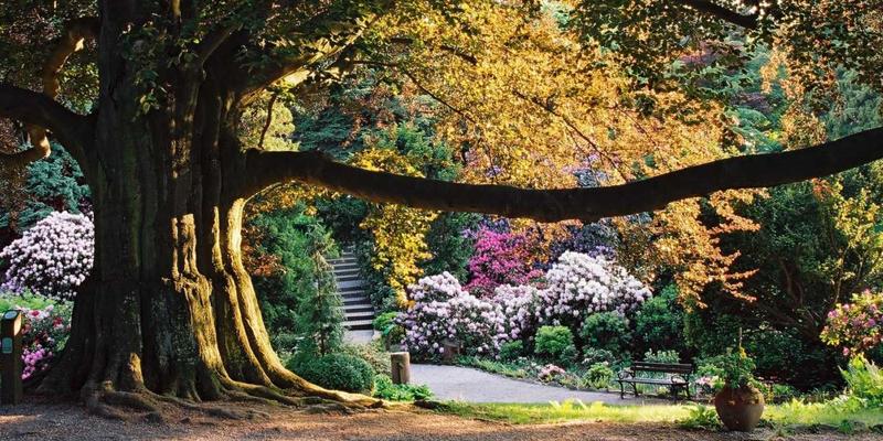 Wyjazd szkoleniowy do Arboretum w Wojsławicach