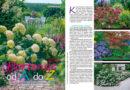 """Sierpniowy """"Mój Ogródek"""" na rynku od 23 lipca! Kup, przeczytaj, koniecznie poleć innym działkowcom! – 23.07.2020"""