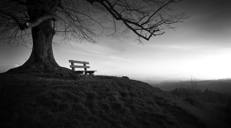 Moim zdaniem II (47) – Samotność i osamotnienie