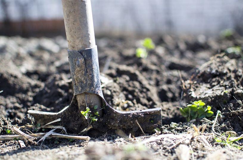 Jesienne przekopywanie gleby